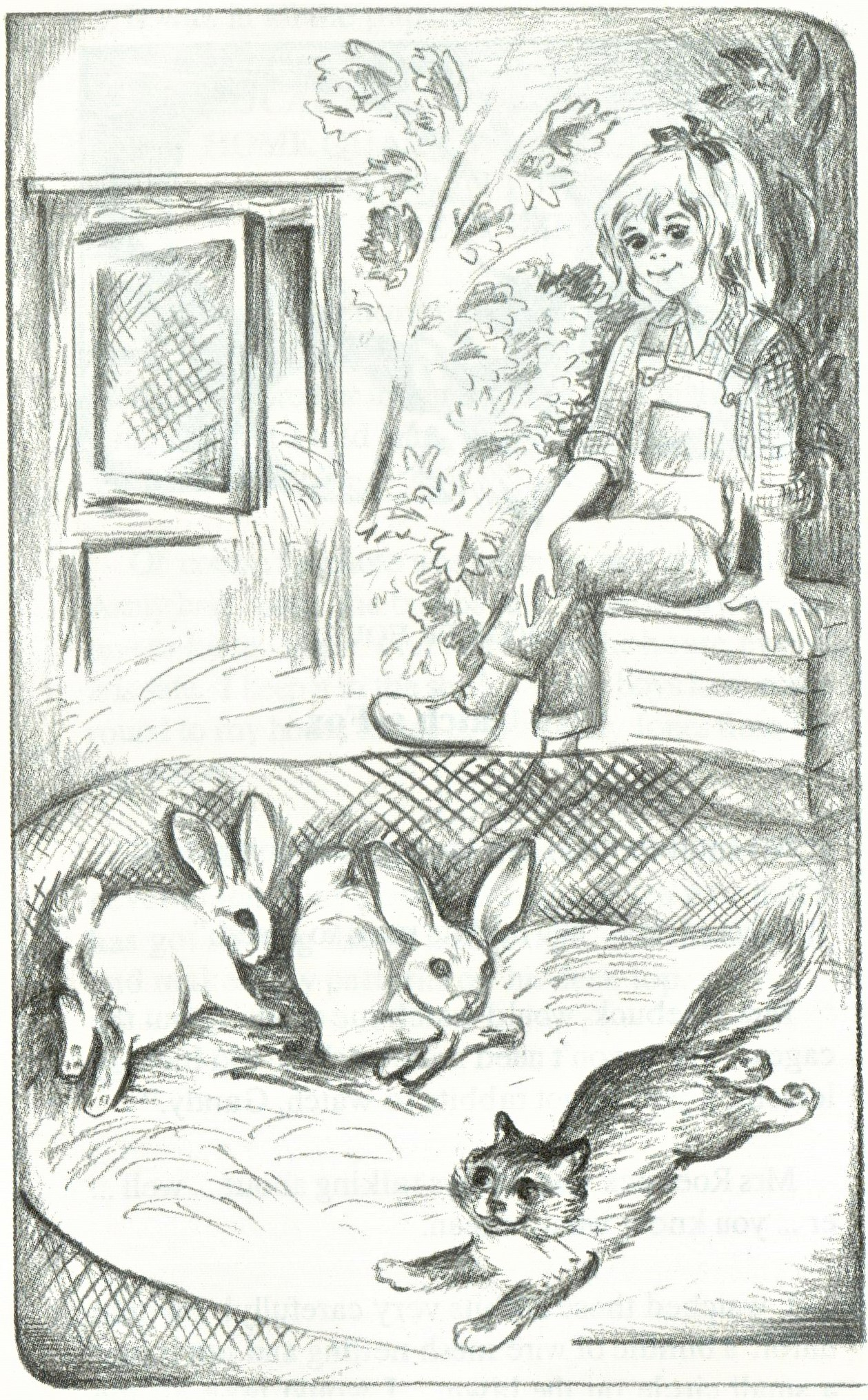Gandy Lande, Candy with the rabbits
